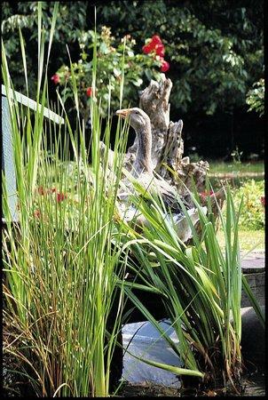 le Clos  champel : jardin