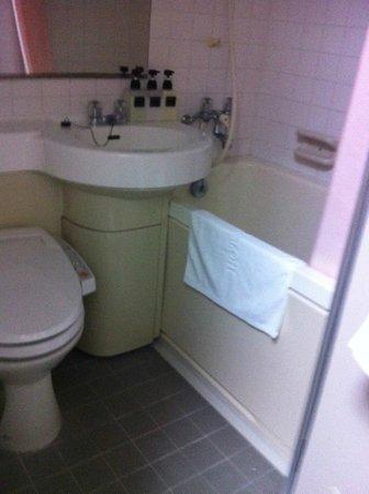 Tokyo Hotel Horidome Villa : Bathroom