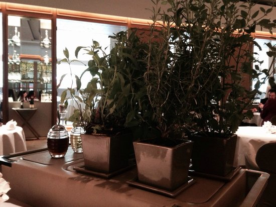 Alain Ducasse at The Dorchester: The infusion garden that wheels past you!