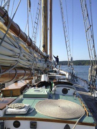 San Juan Classic Day Sailing: The Schooner Dirigo II  - Summer in the Islands - all thats missing is you..