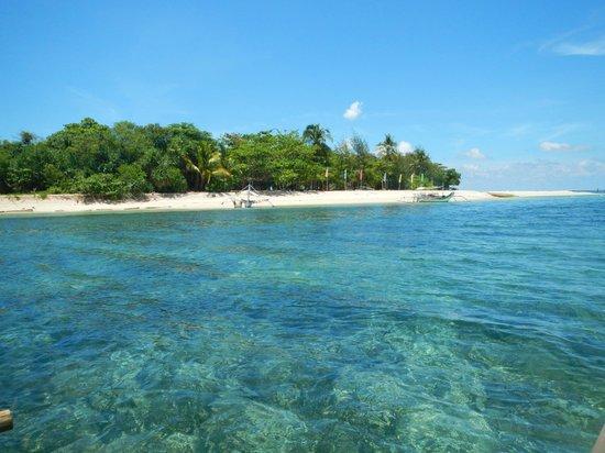 Arena Island Resort : Island and Corals