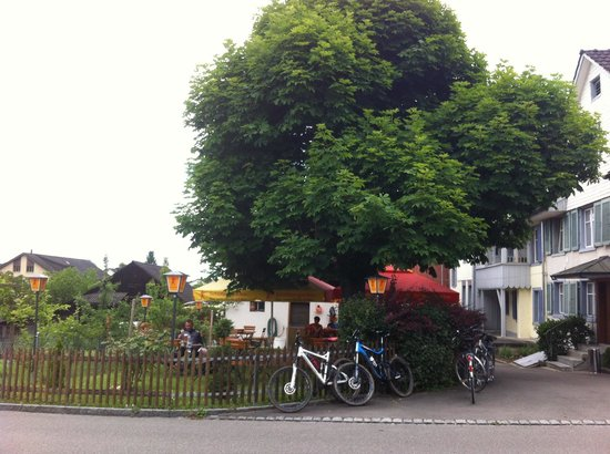Trattoria Storchen : Giardino