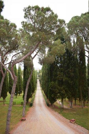 Relais Villa Petrischio : Dalla camera