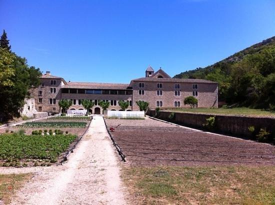 Abbaye Notre-Dame de Sénanque : l'orto sul retro
