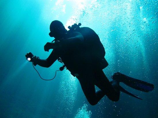 Luum ha Divers: Cenote diving,Alfredo.