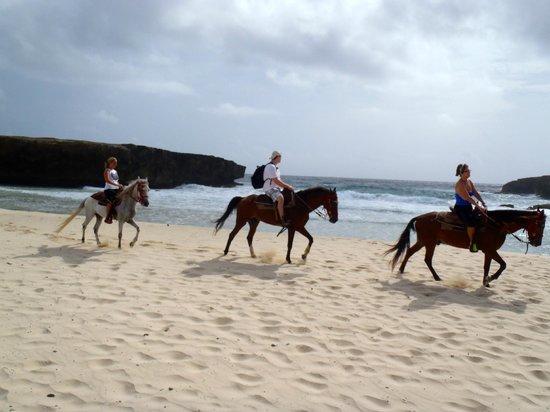 Rancho Daimari : Beach ride on the way to the natural pool
