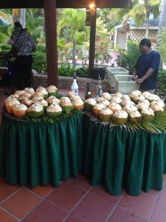 Palm Island Resort & Spa : fresh coconuts