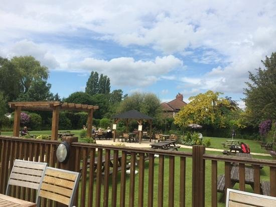 The Jolly Thresher : What a beer garden!