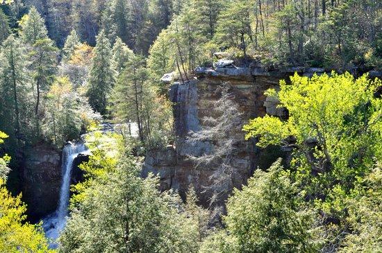 Fall Creek Falls State Park: Fall Creek Falls