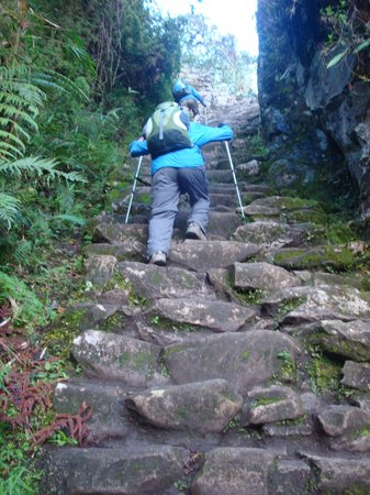 Camino Inca: Monkey Stairs