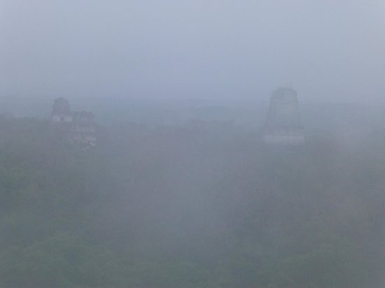 Hotel Tikal Inn: Sunrise from Temple IV - Minus the sun