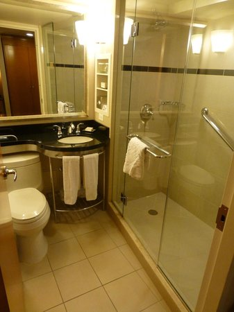 New York Hilton Midtown: Bathroom