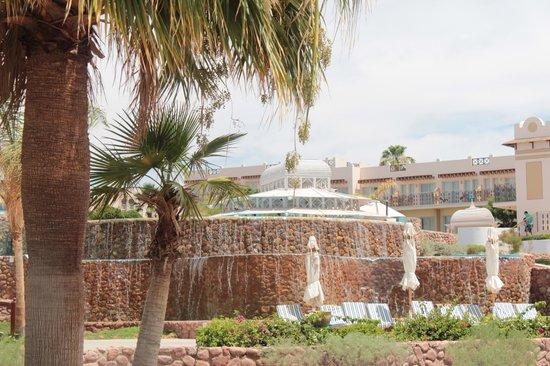 Concorde El Salam Front Hotel: Бассейн