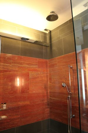 Andaz 5th Avenue: Walk-in rain shower