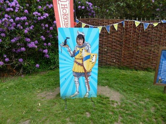 Warwick Castle: Mad Knight