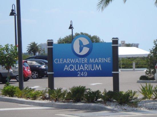 Clearwater Marine Aquarium: Aquarium Sign