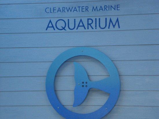 Clearwater Marine Aquarium : CMA Logo
