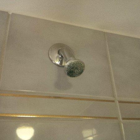 Quality Hotel Globe: Verschimmelter Duschkopf (nicht mehr im Betrieb)