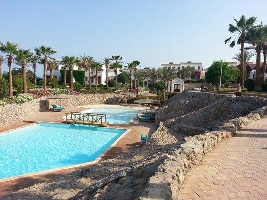 Club Reef Resort : Piscina