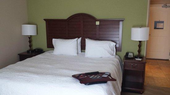 Hampton Inn New Smyrna Beach: Comfy Beds