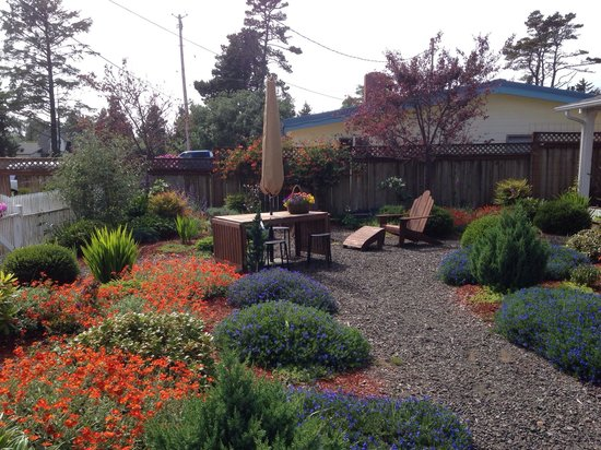 Westport, WA: Enjoy a beer in the garden.