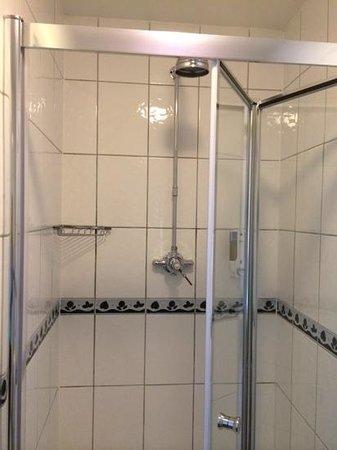 Gatwick Belmont Hotel & Restaurant: Shower