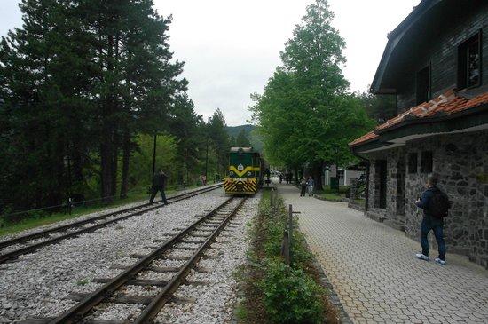 Nature Park Mokra Gora: поезд на станции