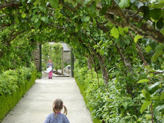 The Lost Gardens of Heligan : formal gardens