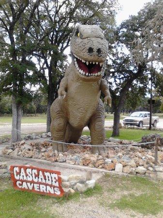 """Cascade Caverns : """"Rex""""."""