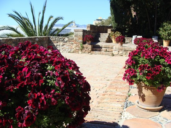Barcelo Malaga : Old fort's gardens