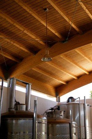 Bodegas Binifadet: The roof at Binifadet (c) Josh Murray