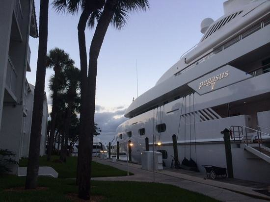 Hilton Fort Lauderdale Marina: Super yachts out the window!