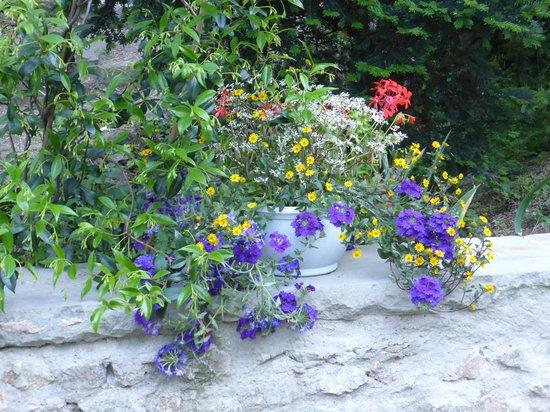 Bassin 1 picture of le jardin d 39 eden tournon sur rhone for Le jardin d eden
