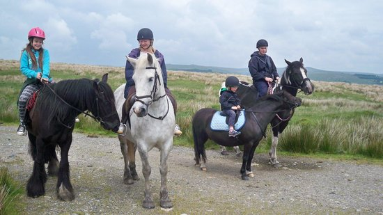 Tor Royal Bed & Breakfast: pony trekking, May 2014