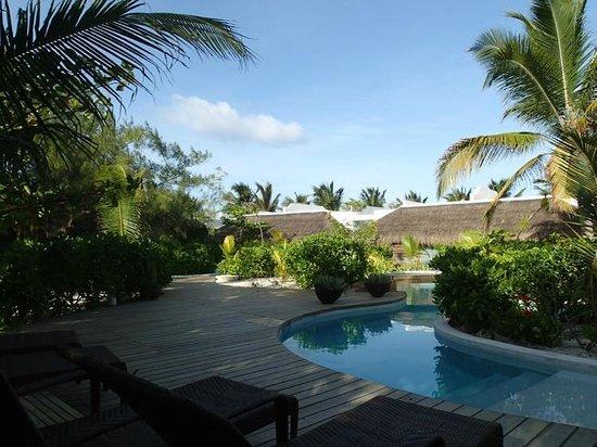 The Beach Tulum : pool on backside