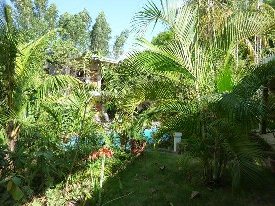 Managua Hills Bed and Breakfast: Innenhof