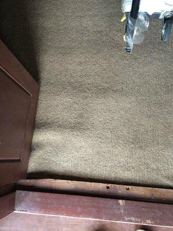 Vimean Sovannaphoum Resort: gross dirty brown indoor/outdoor carpeting in bedroom
