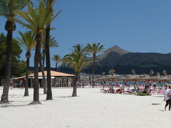 Playa de Alcudia : One of the Beach Bars