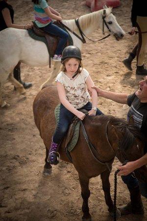 Drumcliffe Equestrian: Birthday party