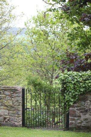 Thirlestane Castle: Woodland walk