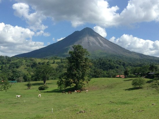 Majestic Lodge: Arenal Volcano.