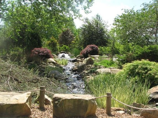 Creation Museum: Waterfall outside