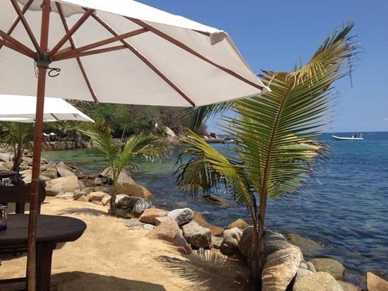 Vallarta Adventures - Las Caletas Beach Hideaway : Lunch at Las Caletas