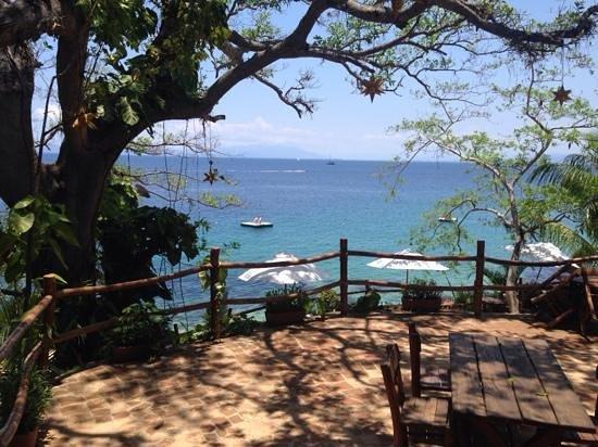 Vallarta Adventures - Las Caletas Beach Hideaway : Amazing views and secluded areas.