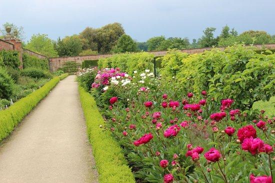 Wimpole Estate: Inside the Walled Garden