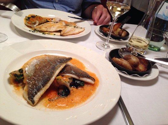 Brasserie Trier: Gebratenes Doradenfilet mit Tomatenschaum