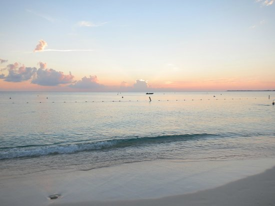 The Ritz-Carlton, Grand Cayman: Beach view
