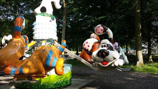 Parc Babyland : Nouveauté Les chiens sauteurs.  Très amusant