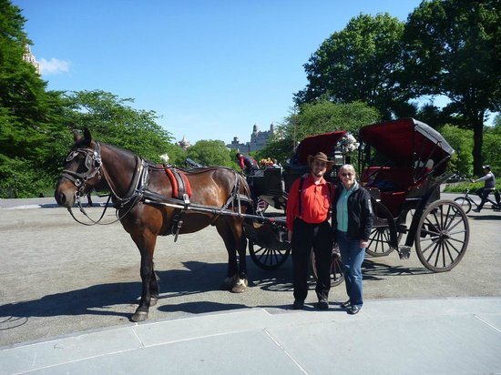 NYC Horse Carriage Rides: Mr. Scott and his Driver