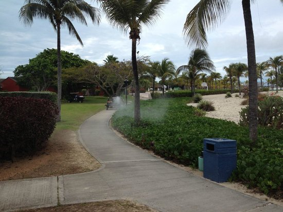 Club Med Turkoise, Turks & Caicos: Pesticide fog cart.  We were not able to learn chemical used.  I will upload a movie soon.